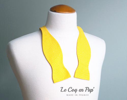 Noeud papillon jaune poussin à pos blanc livré noué Le Coq en Pap