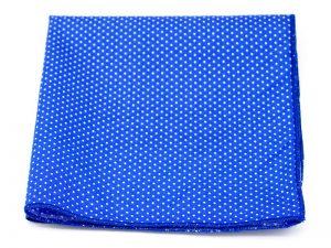 Le Coq en Pap' - Pochette de costume bleu royal à pois